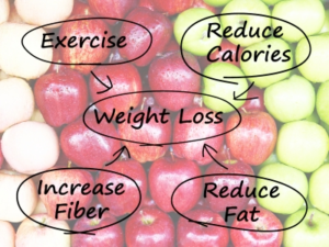 weight-loss-digram